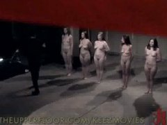 domination, party, slave, groupsex, bdsm, hardcore, spanking, whipping, public