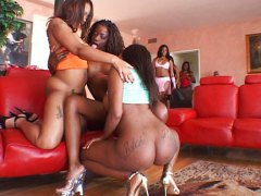 carmen hayes, brown sugar, candice nicole, sydnee capri,  orgy, monique, brown sugar