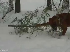 Dame gives a fellatio in the snow