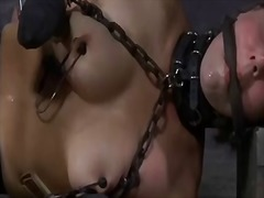 Corded up melons with fucktoy pleasuring