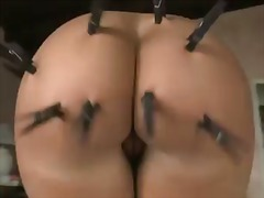 Kelly Divine, cul gros, belleses, pits grossos
