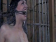 Breasty hottie loves getting pussy torture