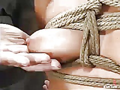 Holly Wellin, dominering, bdsm, bondage